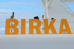birkakryss1863