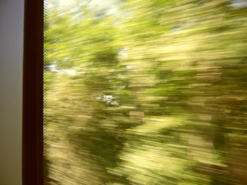 Bild från tågfönstret