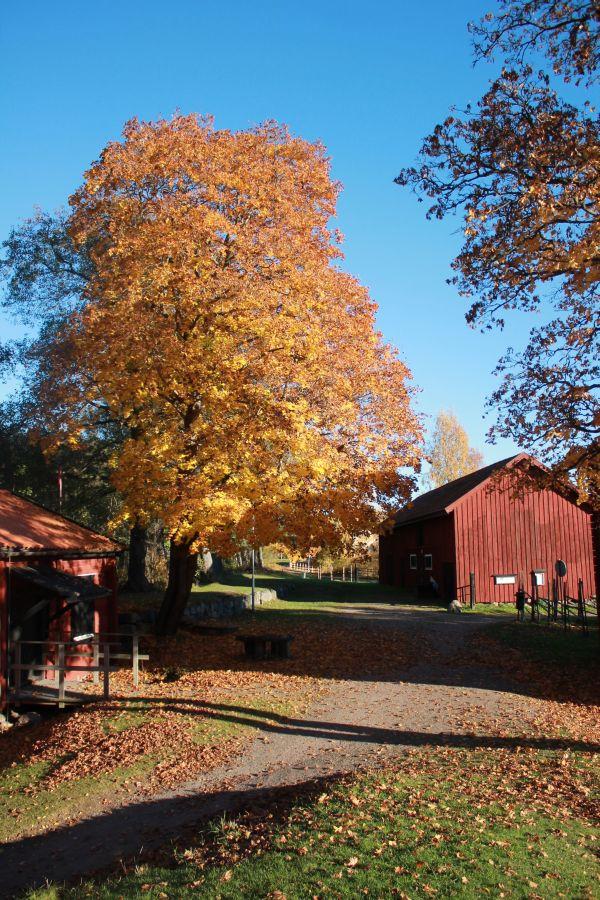 Hembygdsgården Kristinehamn