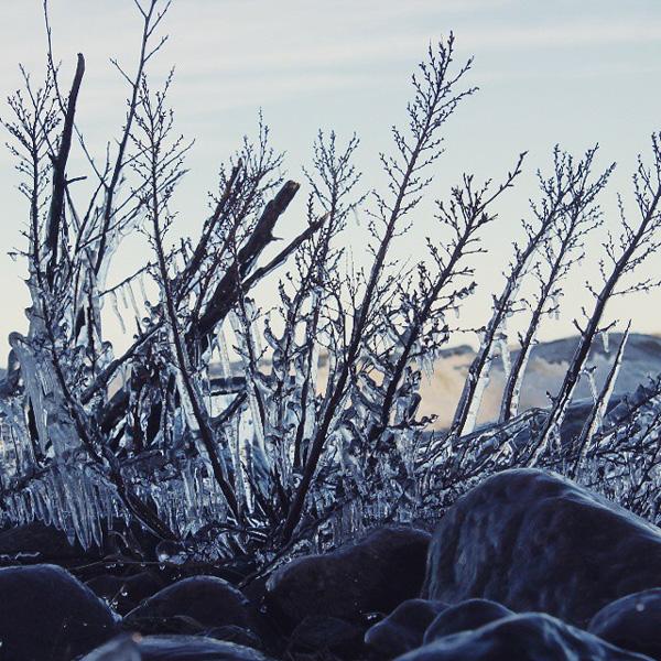 Iskonst på klipporna i Baggerud