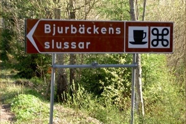 allsang_bjurback1601